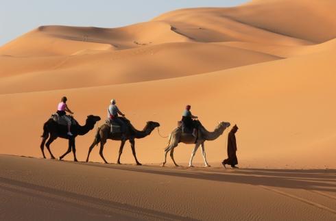 camel-caravan_shutterstock_73998700
