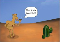 camelcartoon