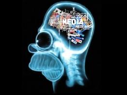 homer-media