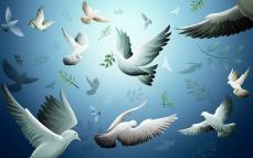 C/O http://tseliotsthewasteland.wikia.com/wiki/File:Peace-world-peace-9444894-1920-1200.jpg